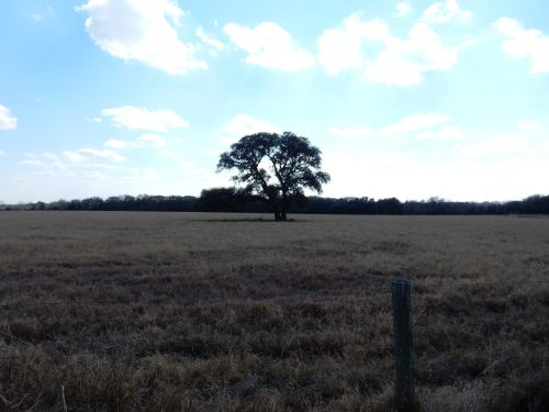 680 acre Cattle Ranch – Jackson County