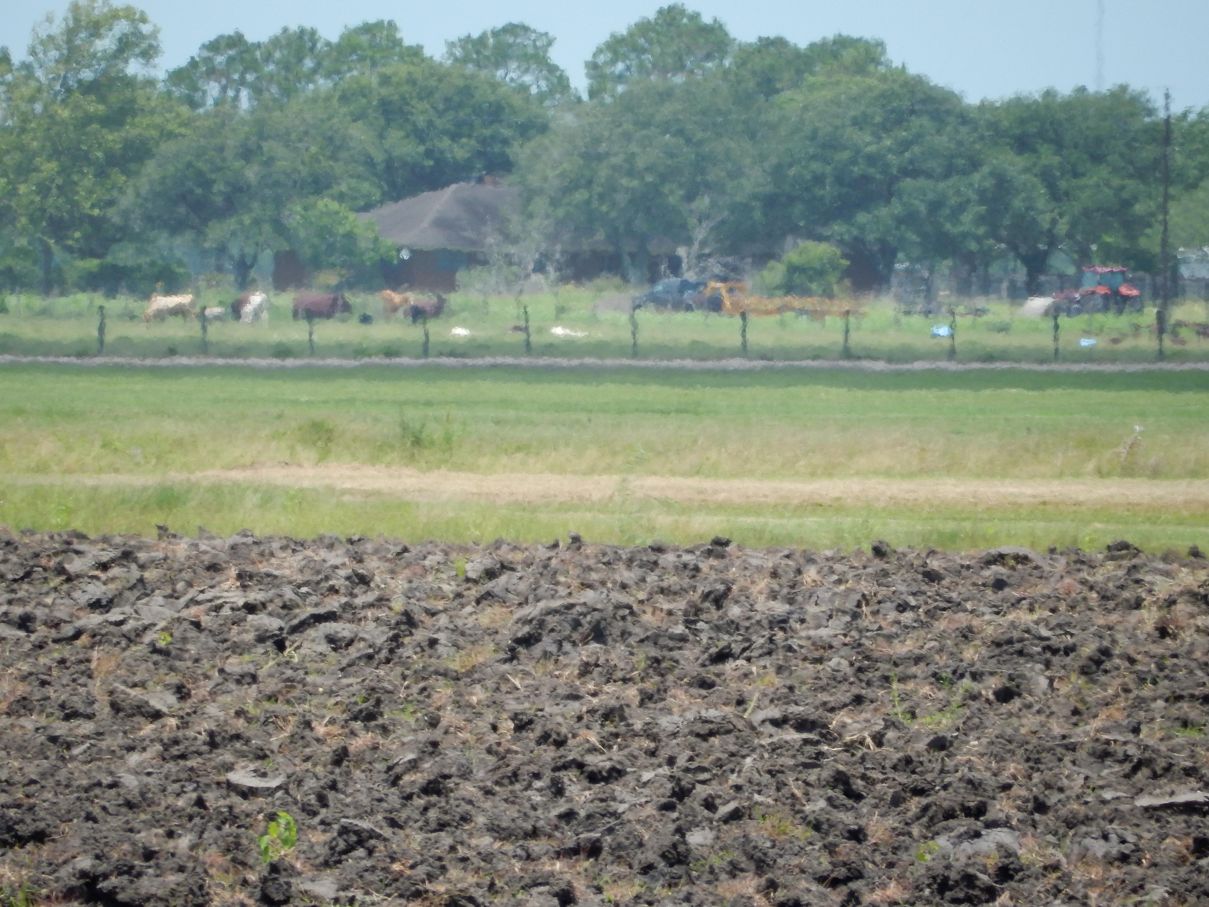 Attention developers 121 Acres in Van Vleck, TX