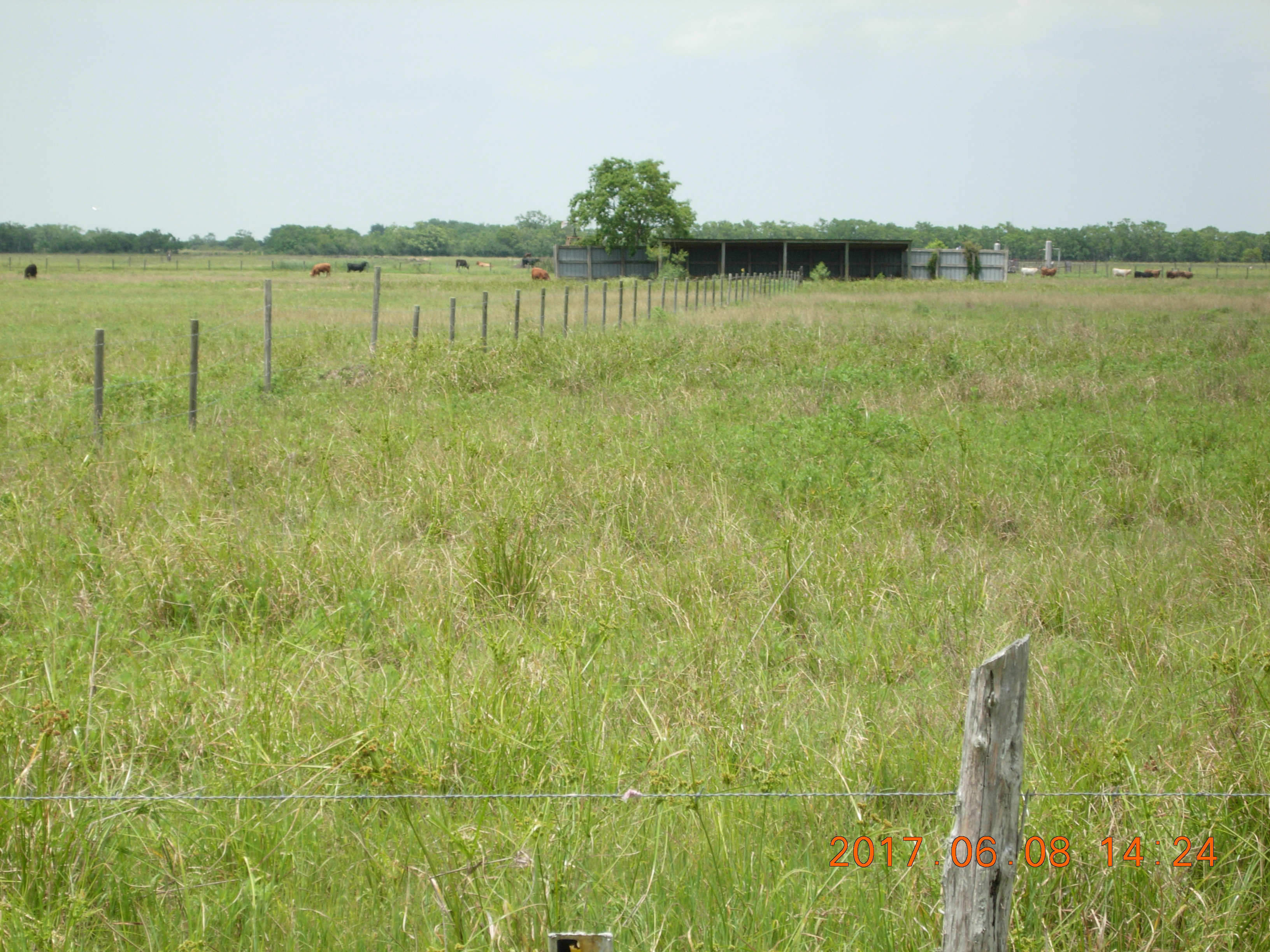 17 Acres in Wadsworth, TX