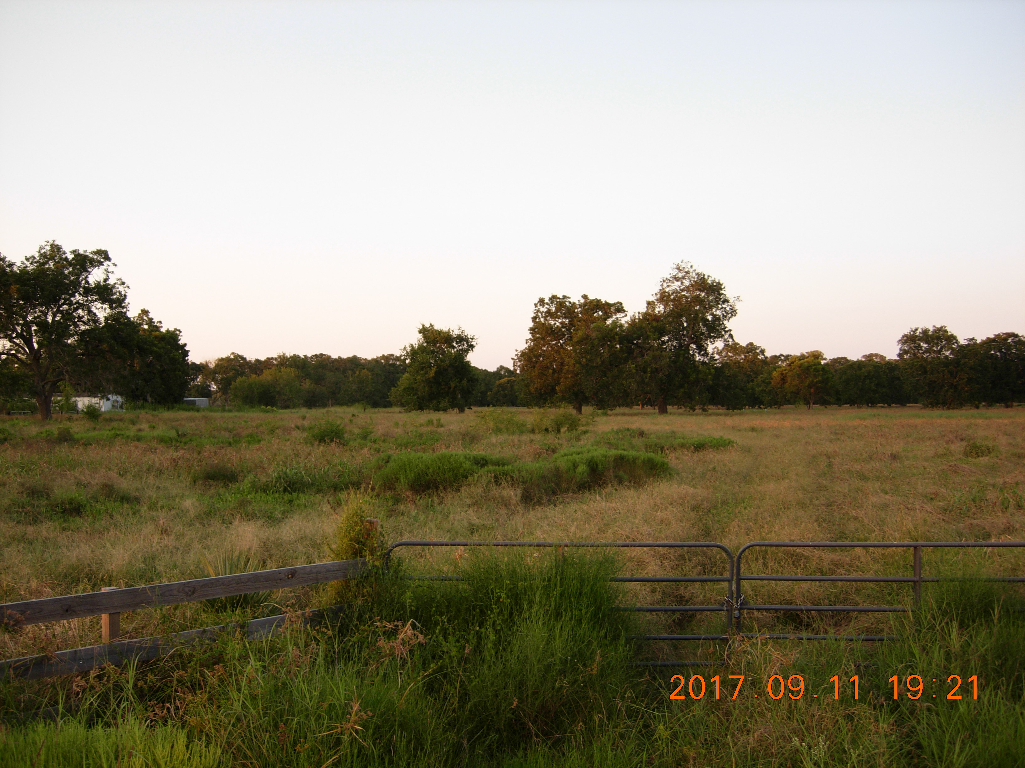 20.7 Acres on FM 524 Brazoria County