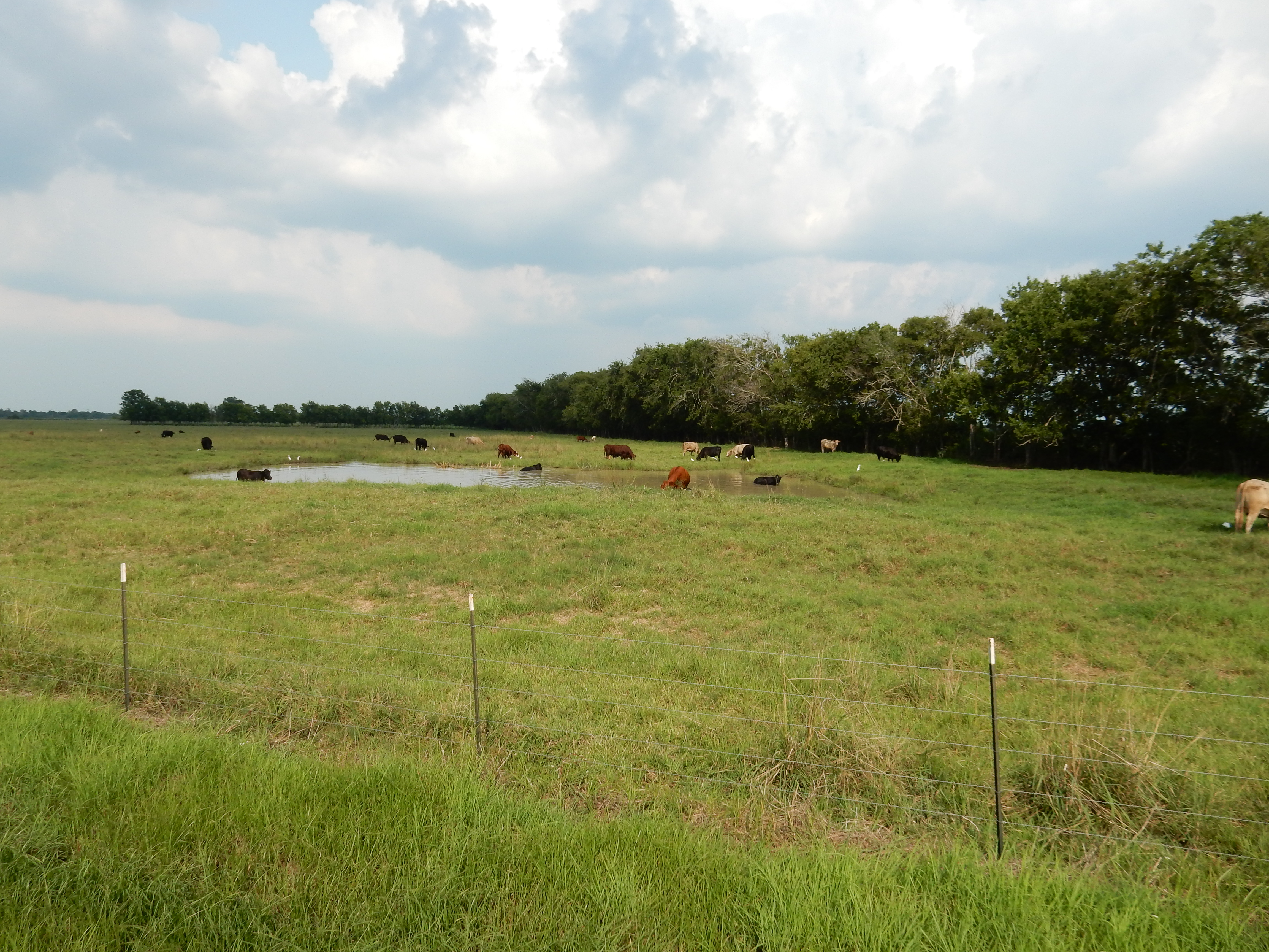 5+ Acre home site lots