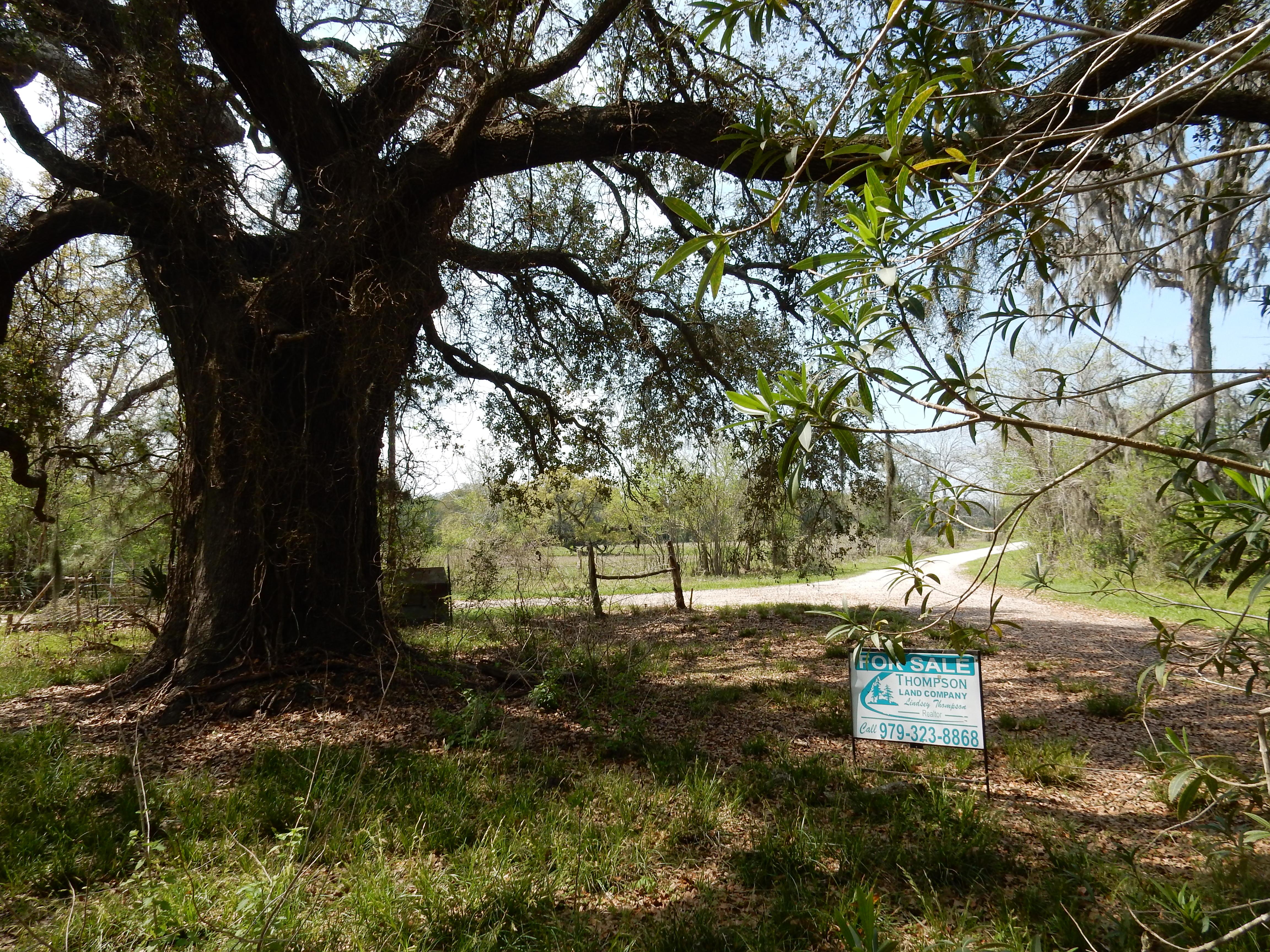 224.73 Acres Cedar Lane
